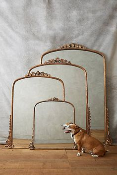 Gleaming Primrose Mirror $398 - $1,298 at Anthropologie. Nice for a guest bedroom.