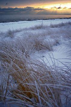 """from my board """"Winter am Meer - winter beach"""" Winter Beach, I Love Winter, Winter Snow, Winter Light, Winter Photography, Landscape Photography, Winter Magic, Winter Scenery, Snow Scenes"""