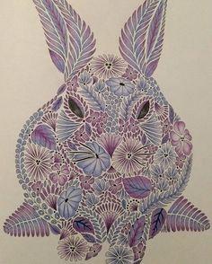 Milliemarotta Animalkingdom Rabbit Coloringbook