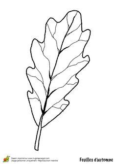 Coloriage dessin feuilles automne vigne coloriages dessins d 39 automne pinterest feuille - Dessin d une feuille ...