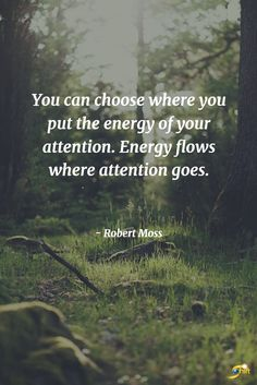 """You can choose where you put the energy of your attention. Energy flows where attention goes."" - Robert Moss  http://theshiftnetwork.com/?utm_source=pinterest&utm_medium=social&utm_campaign=quote"