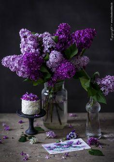 Lilac Flowers, Love Flowers, My Flower, Spring Flowers, Flower Power, Beautiful Flowers, Purple Love, All Things Purple, Shades Of Purple