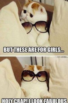 #cute #funnny