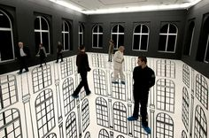 Regina Silveira's Illusion Art