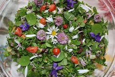 Weight Loss Plans Running 6 Edible Weeds that are More Nutritious than Store-Bought Veggies Chicory Root, Reap The Benefits, Wild Edibles, Healing Herbs, Superfood, Natural Health, Healthy Life, Healthy Eating, Weed