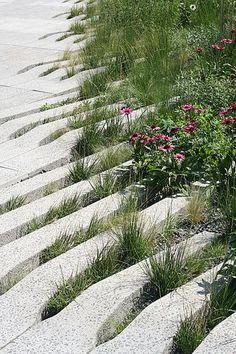 Jardín. Bloques para pastos