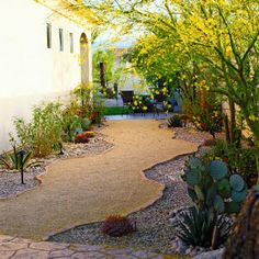 A half-inch of decomposed granite over a compacted base forms a firm clean surface that drains well when summer rains drench this garden in Rancho Mirage, CA. The path's flagstone-edged irregular shape slows visitors down enough to enjoy the yellow-flowering palo verde, agaves, opuntia and cactus. Michael Buccino http://www.mbuccino.com