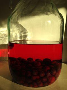 Bramen bosbessen likeur (wodka brandewijn, suiker, vers fruit, kaneel/vanillesuiker)