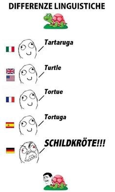 I really want to learn German! Learn Finnish, Learn German, Super Funny, Funny Cute, Funny Images, Funny Pictures, Finnish Language, Funny Jokes, Hilarious