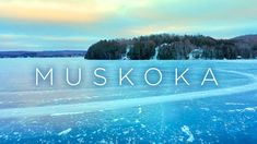 A romantic spot in summer or winter in Muskoka. Definition Of Love, Wedding Photography, Romantic, Winter, Summer, Winter Time, Summer Time, Romantic Things, Summer Recipes