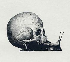 La muerte viene lenta pero segura                                                                                                                                                                                 Más