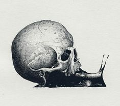this would be an awesome idea, except maybe an animal's skull instead of a humans... maybe..., snail, dead, death, slug, beauty, art, tattoo
