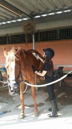 気晴らしにと友人から誘って頂き  先日始めた乗馬!!  3度目のレッスンでしたが 良い汗かきました  今日の担当馬は パワーホルダー  相性バッチリ  小走りのレッスンで まだ慣れないけど 褒められましたヾ()ノ  褒められて伸びるタイプの私です(笑)  乗馬も秋に向けての目標に向かって 頑張ろーーーっ  今夜は 少し寝て3時に宮崎に向けて出発です!!  お休みなさい tags[福岡県]