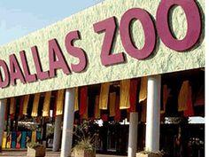 Dallas Zoo,Dallas,TX