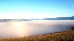 A temperature inversion :) Perfect mist and beautiful mist...