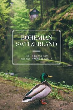 Easy Hiking Trip Near Prague: An easy hike featuring two great sitesof the Bohemian Switzerland National Park in the Czech Republic. Great for families, a bit of romance for couples, or solo travelers looking to experience nature. An easy tour just a few hours from Prague.
