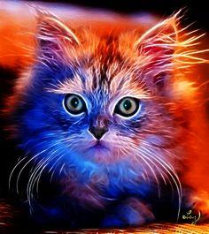 Cat XII by Lashington.deviantart.com on @DeviantArt
