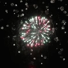 The perfect Fireworks Explosions Colors Animated GIF for your conversation. Discover and Share the best GIFs on Tenor. Happy New Year Gif, Happy Day, Gifs, Diwali Gif, Fireworks Gif, Fire Works, Happy Birthday Greetings, Canada Day, Happy New Year