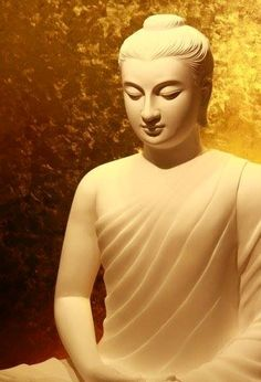 The Buddha-Dhamma is a Torch, since it guides beings through the Darkness. The Buddha-Dhamma is a Boat, since it brings beings across to the far Shore.. The Buddha-Dhamma is a Mirror, since it shows beings, how they Actually are… The Buddha-Dhamma is a Medicine, since it cures beings from deep Diseases…