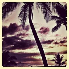 Nothing like getting up to a morning sunrise in Hawaii. Happy Tuesday from Pipeline Clothes & Gear. #hawaii #oahu