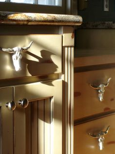 Kitchen cabinet pulls - EquineRV.com