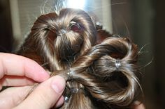 Ever since Valentine's Day, I have been playing with some hairstyling ideas for St. Patty's Day. I have to admit… Little Girl Hairstyles, Pretty Hairstyles, Rachel Hair, Communion Hairstyles, St. Patricks Day, Holiday Hairstyles, Love Your Hair, Doll Hair, Hair Health