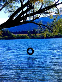 tire swing jumping into the lake...love