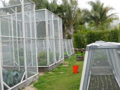 1000 images about vegetable garden enclosures on for Enclosed vegetable garden designs