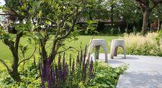 Modern farm garden with salvia and fox gloves - Boerderijtuin