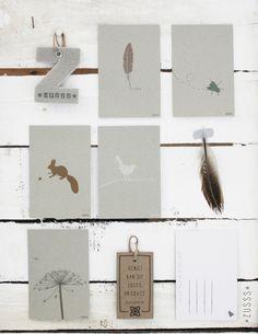 Zusss | Originele ansichtkaarten met het thema insekt. http://www.loft55.nl/a-36354961/kaarten/zusss-kaartenset-set-van-10-stuks/