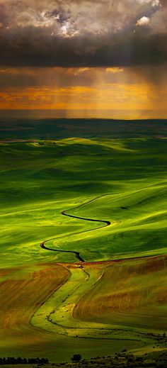 Wheat Hills | Palouse Region of Washington State, USA | by Bsam