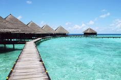 Did you know: In Tahiti the average temperature is about year round, both air and water! Let's plan your winter getwaway before the overwater bungalows are sold out! Tahiti, Bora Bora, Destination Soleil, Illustration Book, Week End En Amoureux, Bon Plan Voyage, Travel Rewards, Parcs, Vacation Packages