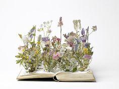book-sculpture-cutting-paper-art-19__880