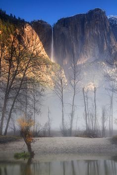 tulipnight:  Rising From The Mist by RichGreenePhotography.com on Flickr.
