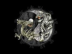 Yin Yang - Dragon & Tiger Pictures, Images and Photos