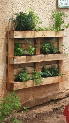 44 Pallet Planter Ideas For Your Balcony Garden - Balcony Decoration Ideas in Ev. - 44 Pallet Planter Ideas For Your Balcony Garden – Balcony Decoration Ideas in Every Unique Detail - Pallet Garden Walls, Vertical Pallet Garden, Herb Garden Pallet, Pallet Gardening, Vertical Gardens, Vegetable Gardening, Pallet Garden Projects, Palette Herb Garden, Pallet Wall Decor
