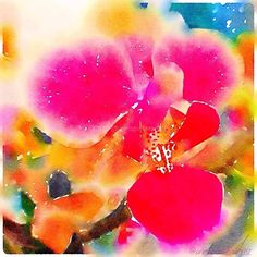 color me bright abstract orchid by Anna Porter digital painting ~ 20 x 20