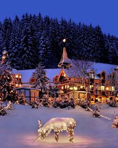 It is Christmas night and its beautiful outside. Winter Wonderland Christmas, Christmas Night, Winter Christmas Scenes, Santa Christmas, Winter Wonderland Pictures, Christmas Scenery, Christmas Landscape, Winter Landscape, Winter Scenery