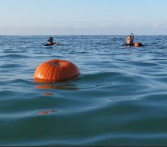 It's difficult to carve pumpkins underwater..... they're very buoyant!