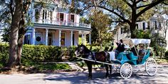 New Orleans and Cajun Country from Gate 1 Travel #neworleans #gate1travel