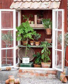 Det blev ett litet #växthus till slut. Sen började det regna såklart. Nu redigera bilder och knappra text.