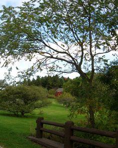 Red barn in Spring 2011. Taken at Whitnall Park, Milwaukee, Wi.