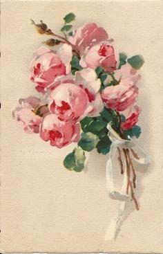 C.Klein - Artist Signed Postcards