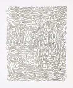 Rachel Whiteread. Untitled (Nets). 2002