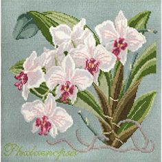 Phalaenopsis needlepoint kit from our Exotics Collection at Elizabeth Bradley