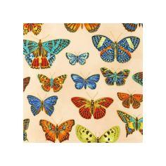 Tissu Field Notes Metallic Papillons Bright x 10cm