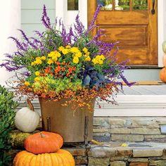 Planter of mix blazing colors