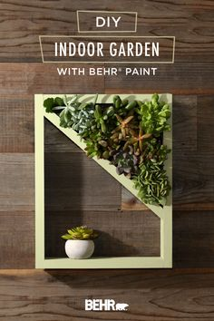 Succulents are a wonderful way to incorporate a natural atmosphere in your home, and this DIY Majestic Indoor Garden is a beautiful way to bring life to any room. Paint this shelf with the BEHR® 2020 Color of the Year—Back to Nature—then hang it on your wall and enjoy the earthy personality it exudes. Click below to find the full tutorial for this project. Garden Design, Garden Art, Home And Garden, Indoor Garden, Indoor Plants, Garden Shelves, Diy Garden Projects, Plant Decor, Container Gardening