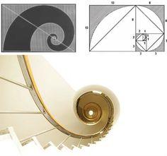 Golden Ration nautilus..png (300×281)