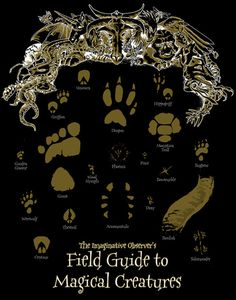 Field Guide to Magical Creatures Harry Potter by CoyoteesMaine